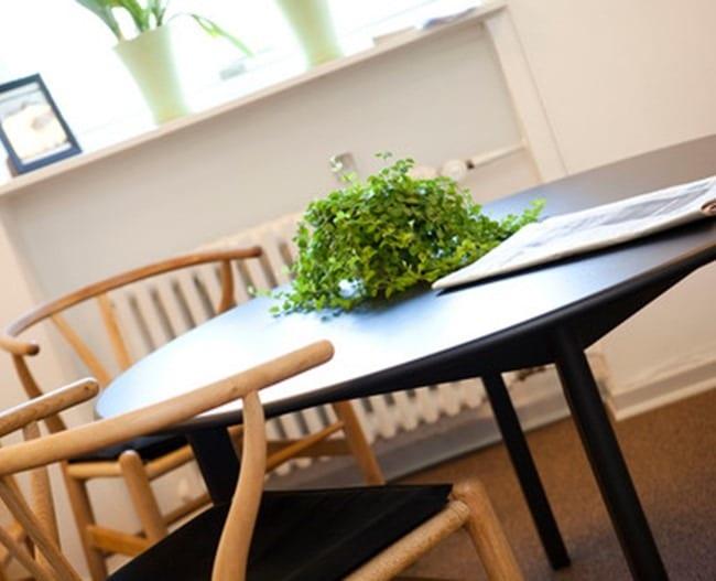 Bord med plante